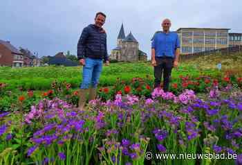 Eerste Oudsbergse pluktuin met zo'n 7.000 bloemen geopend