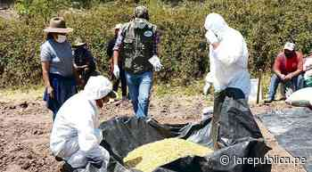 Alistan paro en Cusco por precios altos para producción agrícola y de combustibles - LaRepública.pe