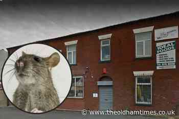 Mouse droppings found in Oldham shop in food hygiene visit - theoldhamtimes.co.uk