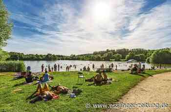 Verschmutzter See im Kreis Esslingen - Gemeinde rät vom Baden ab - esslinger-zeitung.de