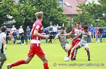 Jugendfußball - FC Esslingen – gemeinsam nach oben - esslinger-zeitung.de