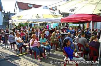 """Pliensauvorstadt live"" - Musikfestival statt Straßenfest - esslinger-zeitung.de"