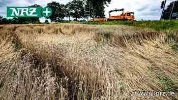 Folgen des Klimawandels in Neukirchen-Vluyn und Moers - NRZ