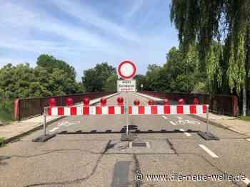 Rastatt und Germersheim warnen: Hochwasserdämme nicht betreten - die neue welle