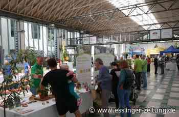 Gartentag Ostfildern - Gärten und Stückle sind im Trend - esslinger-zeitung.de