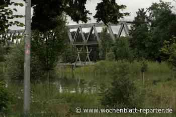 Hochwasser am Rhein im Kreis Germersheim * Update: Kleine Sickerstellen an den Deichen mit Sandsäcken behoben - Germersheim - Wochenblatt-Reporter