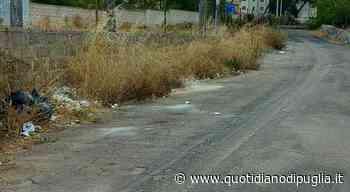Strada-pattumiera a Casarano: il sindaco dispone la chiusura - quotidianodipuglia.it