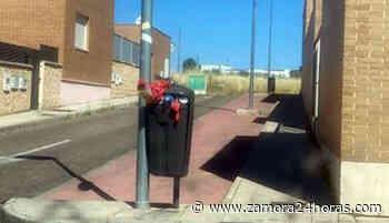 Vecinos de San José Obrero piden mayor limpieza en algunas de las calles - Zamora 24 Horas