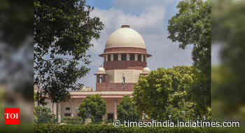 Supreme Court on decriminalisation of polity: 'Nothing is ever done and nothing will ever be done'