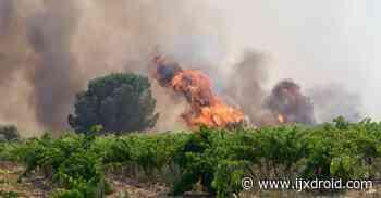 Pyrénées-Orientales – O incêndio Baho está consertado: 30 hectares queimados, cerca de cinquenta evacuações, uma casa de fazenda completamente destruída - ijxdroid