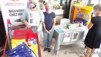 Castelsarrasin : Les amis de Kali en collecte - ladepeche.fr