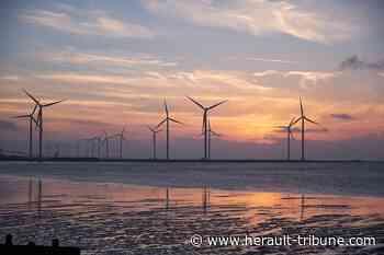 Cap d'Agde, Petite Camargue, Fos-sur-Mer… quatre mois pour donner votre avis sur les éoliennes en mer (vidéo) - Hérault-Tribune