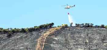 Una imprudencia arrasa un monte de La Rioja en el primer incendio grave del verano - El Correo