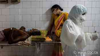 India's COVID-19 death toll could be 10X the official count, research suggests