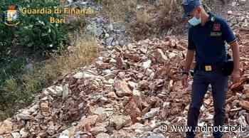Bitonto: discarica di inerti per centomila metri cubi nel parco, sequestro e multa milionaria - Noi Notizie
