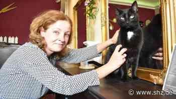 Tierischer Kollege in Itzehoe: Boguslawa Albat frisiert – und Dobby ist dabei | shz.de - shz.de