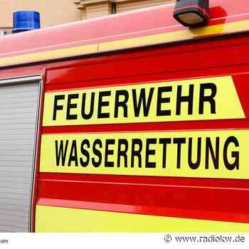 Feuerwehr in Hamminkeln-Dingden rettet eingestürztes Pferd - Radio K.W.