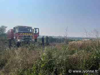 À Auxerre, quartier Rive droite, 10 hectares de blé partis en fumée en trente minutes - L'Yonne Républicaine