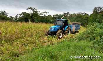 Cocal do Sul quer dobrar PIB do agronegócio até 2024 - Portal Sul Notícias