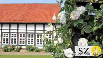 Die Lewer Däle bietet wieder Programm in Liebenburg - Salzgitter Zeitung