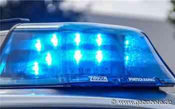 Polizei beendet Feier auf dem Schlossberg in Herrenberg - Gäubote - Die Herrenberger Zeitung