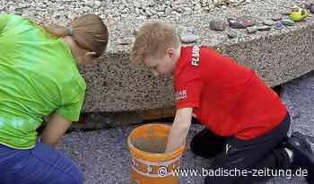 Schlange trifft Frosch - Emmendingen - Badische Zeitung