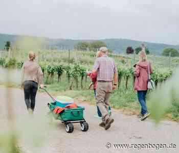 """Wein-Sommer"" in Emmendingen - Regenbogen"