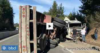 Conductor grave por camión volcado en Ruta del Itata desde Concepción a Chillán: taco es gigantesco - BioBioChile