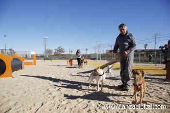 El Centro Municipal Canino de Valdepeñas, protagonista del proyecto de intercambio 'Amor es una palabra de 4 patas' - Lanza Digital - Lanza Digital