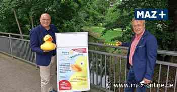 Rotary Club Wittstock organisiert Entenrennen auf der Glinze - Märkische Allgemeine Zeitung