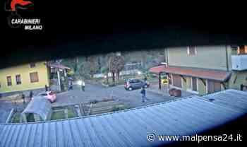 Spaccio di coca a Legnano: 8 anni e 8 mesi a Kojak. Assolto il padre - MALPENSA24 - malpensa24.it