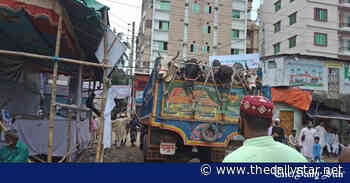 Incurring loss, cattle traders leaving Dhaka with animals - The Daily Star
