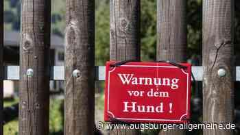 Beim Gassi gehen attackiert: Hund beißt Mann in Finger - Augsburger Allgemeine