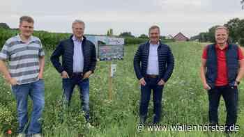 Als Blühpaten in Wallenhorst im Einsatz für die Artenvielfalt - Wallenhorster.de