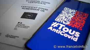 Pass sanitaire : un contrôle qui vire au casse-tête - Franceinfo