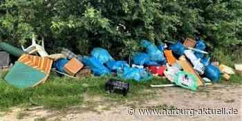 Säckeweise Müll und Sperrmüll: Illegale Müllentsorgung in Neu Wulmstor - Harburg aktuell