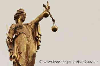 Prozess gegen Helmut Epple - Daniel Töpfer sagt vor Gericht aus - Leonberger Kreiszeitung
