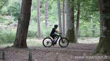De la vallée de Chevreuse à Fontainebleau, ces cyclistes qui ne roulent plus sans l'appli Strava - Le Parisien