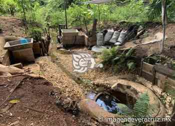 Reserva de manantiales de Acayucan podría convertirse en parque ecológico - Imagen de Veracruz