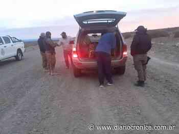 Los interceptaron con carne de guanaco y ñandú camino a Río Chico - Crónica
