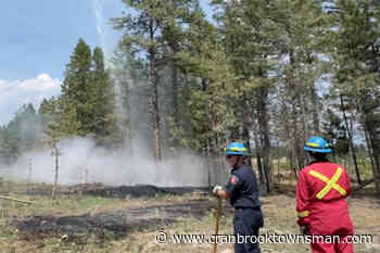 WATCH: Cranbrook Fire Department, BC Wildfire put out interface fire near Moir Park - Cranbrook Townsman