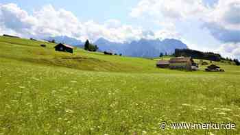 Bewerbung ums Unesco-Weltkulturerbe: Wolken über den Buckelwiesen in Mittenwald - Merkur Online