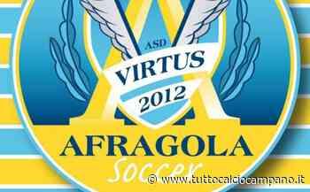 Virtus Afragola Soccer, riconfermati anche Silvestro e Cimmino - Tutto Calcio Campano