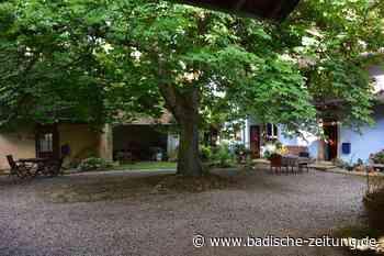 Das Theater im Hof in Riedlingen stellt sein Sommerprogramm vor - Kandern - Badische Zeitung