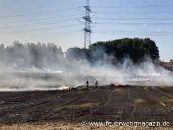 Flächenbrand bedroht Wohnsiedlung