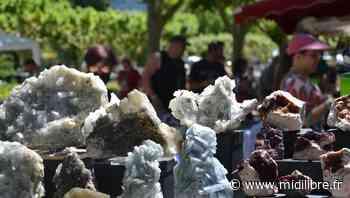 Millau : la Bourse aux minéraux et fossiles à la recherche de son éclat d'antan - Midi Libre