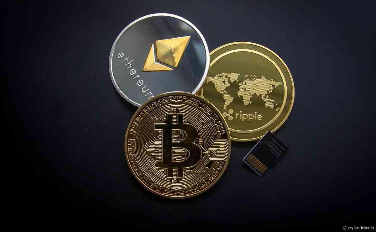 Cathie Wood drängt auf den Markt: Bald neuer Ark Crypto-ETF - CryptoTicker.io - Bitcoin Kurs, Ethereum Kurs & Crypto News