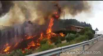 Protección Civil y Emergencias alertan por riesgo de incendios - HoraJaén