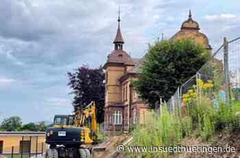 Bauarbeiten an der Burgseeschule - 80-jährige Sommerlinde gefällt - inSüdthüringen.de