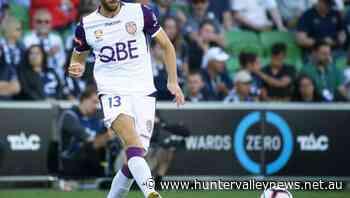 Popovic lures Spiranovic to Victory - Hunter Valley News